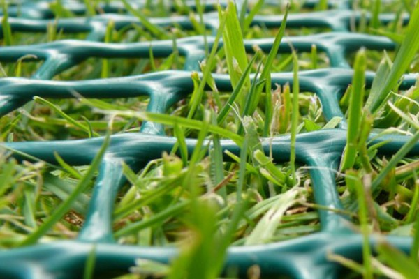 Close up of grass protection mesh