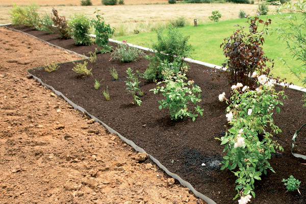 weed and root barrier installed around some newly laid plants