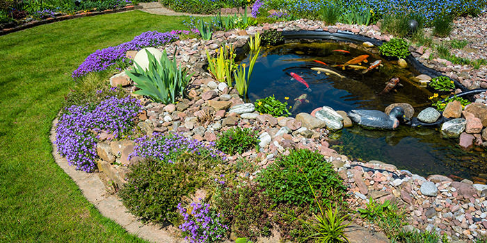 a pond sits in a landscaped garden with a waterproof geomembrane liner being used