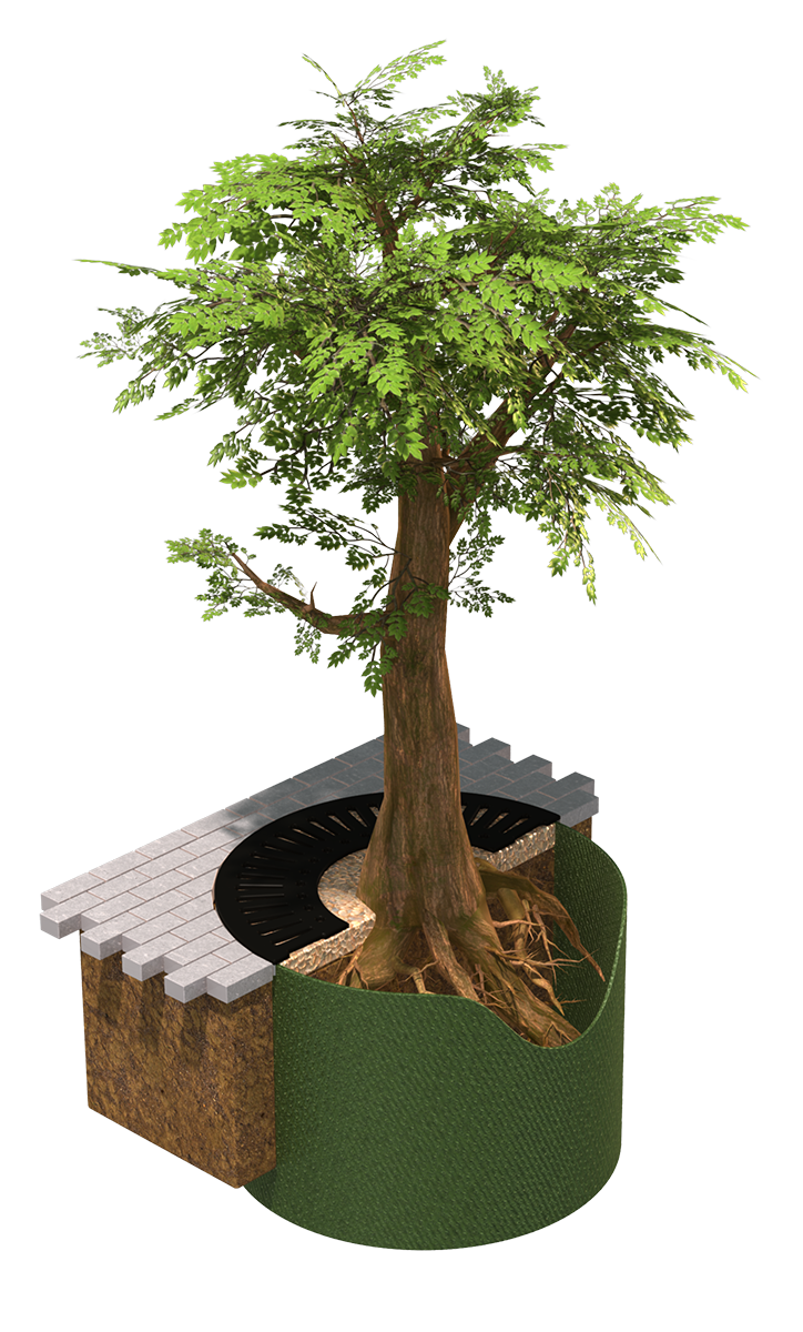 diagram of tree planting in an urban environment using root barriers