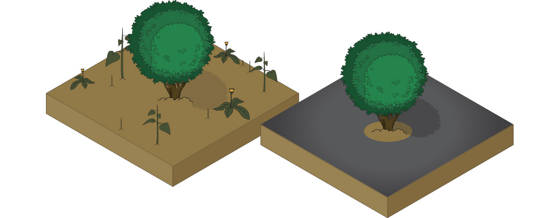 before and after diagram showing the weed barrier benefits